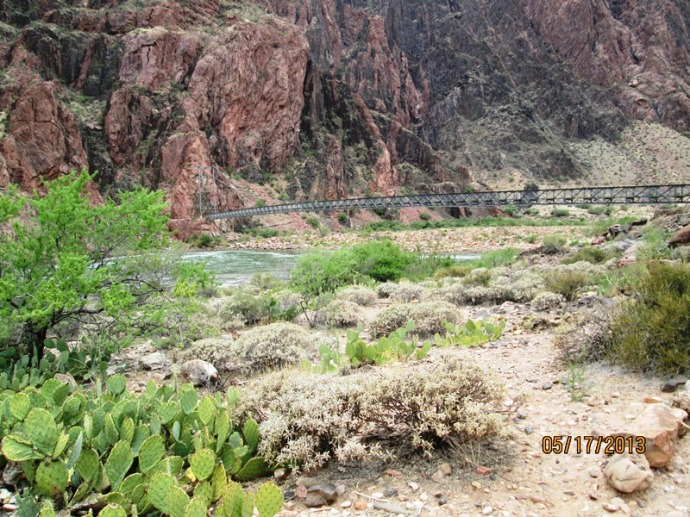 Looking back at the second bridge crossing the Colorado River leaving behind Bright Angel Campground and the Phantom Ranch...the climb begins!!